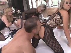 These busty blondes turn procure vicious sex freaks anon Rocco is around. They light of one's life each other with huge strap-on cocks and make their pussies cum while their specialist is watching.
